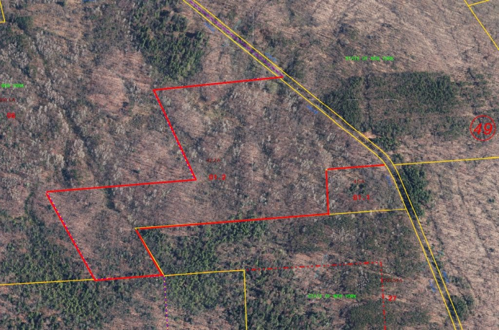42 acres Hunting Land bordering Bear Swamp State Forest in